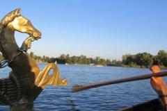 2016-Romantische-Gondelfahrt-auf-der-alten-Donau-4.JPG.JPG.JPG.JPG